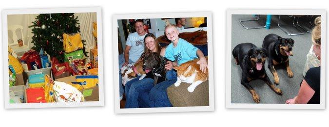 Pet Project Iowa